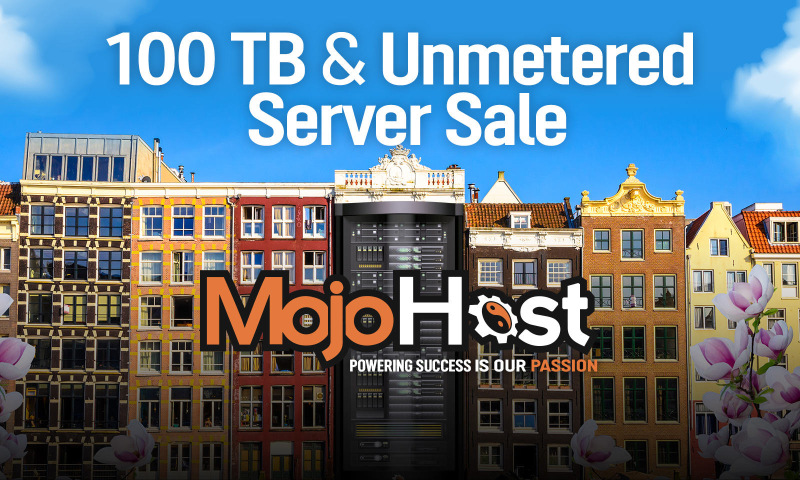 100TB And Unmetered Servers Discounted In Miami And Amsterdam